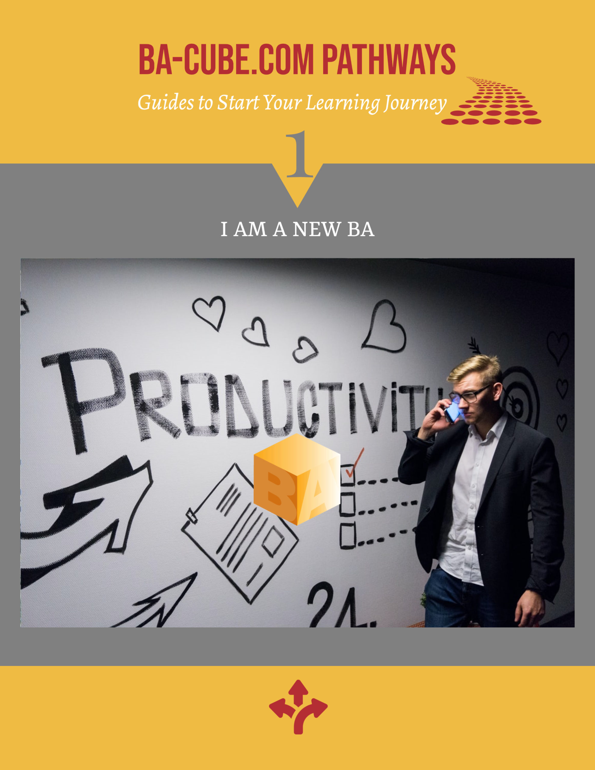 Pathway 1: I am new to being a BA!