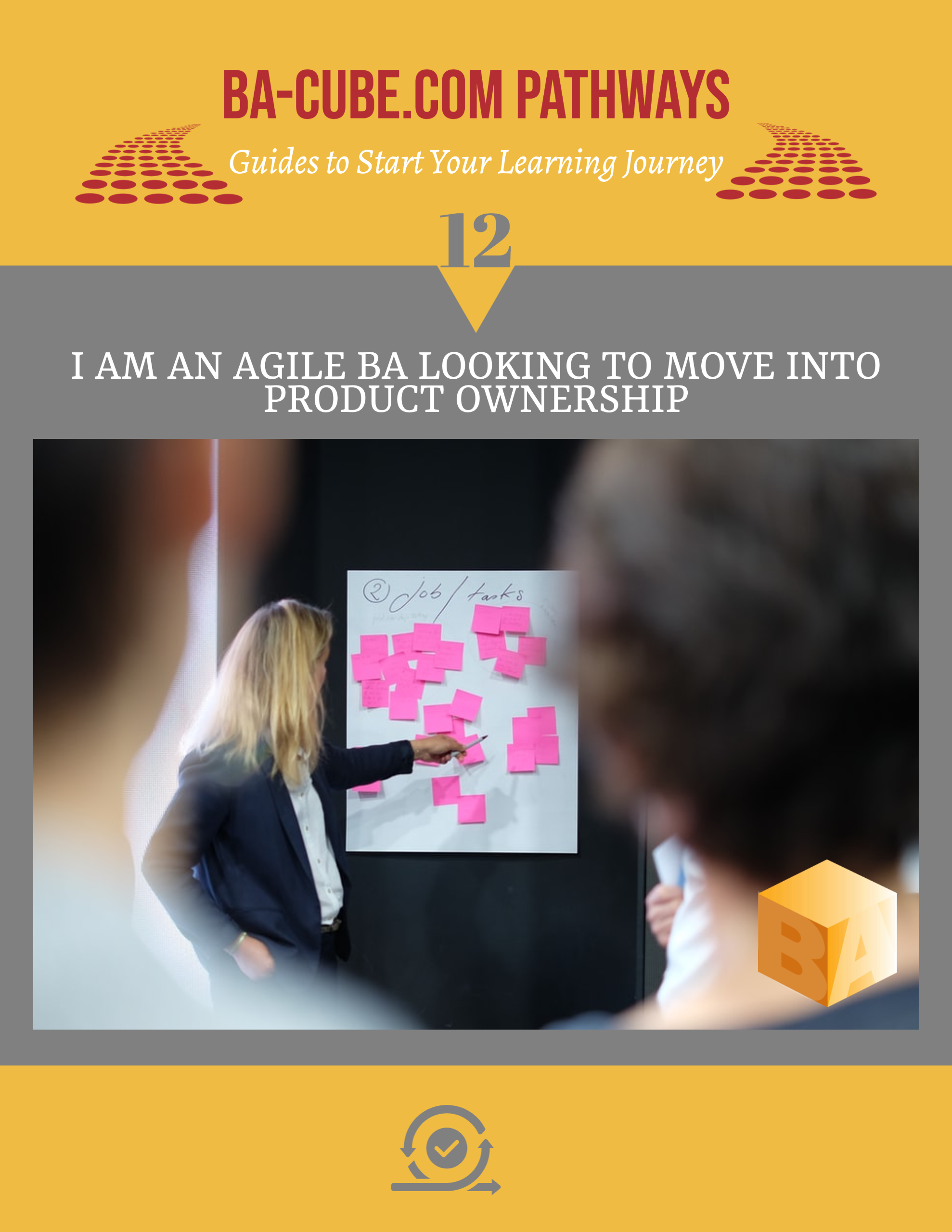 Pathway 12: I am an Agile BA Looking to Move into Product Ownership