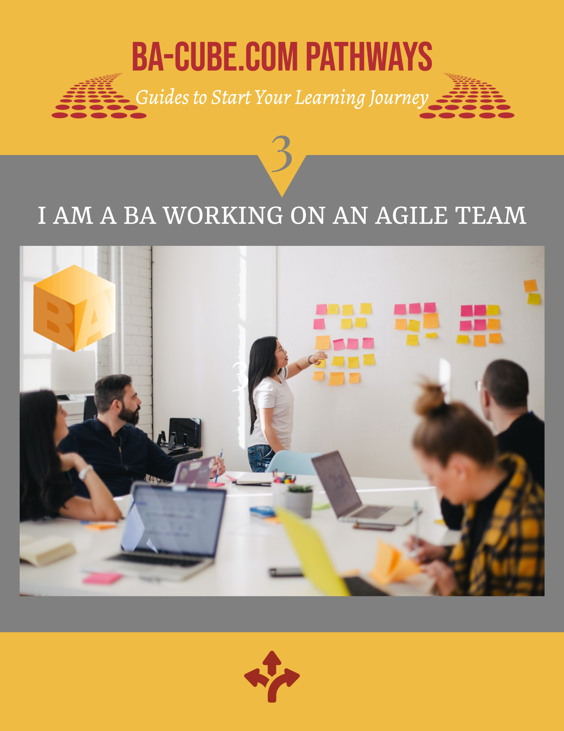Pathway 3: I am a BA working on an Agile team