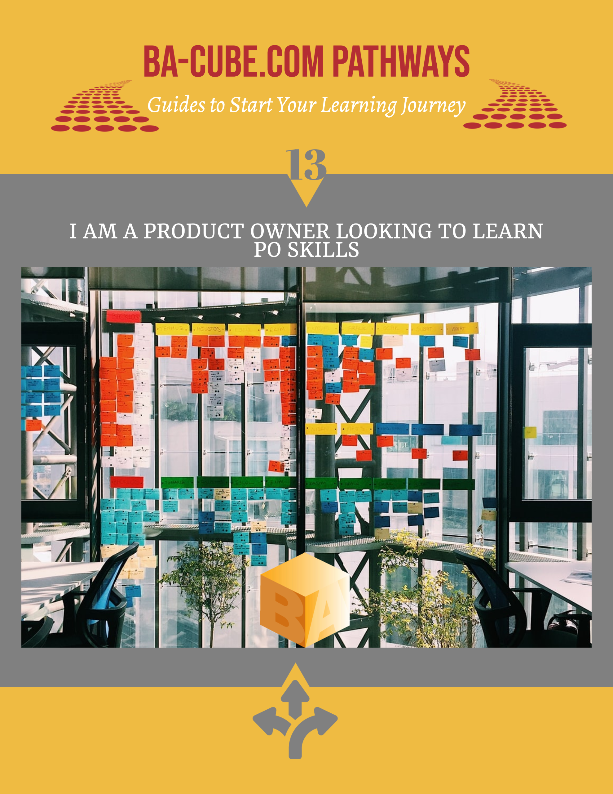 Pathway 13: I am a Product Owner Looking to Learn PO Skills